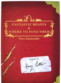 Fantastic Beasts And Where To Find Them - Part 4