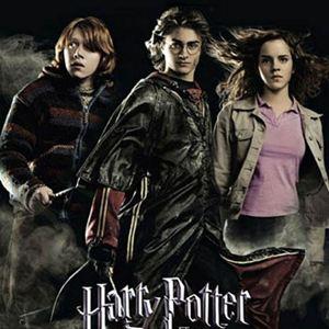 Harry Potter y el Cáliz de Fuego - Película 2005 - SensaCine.com