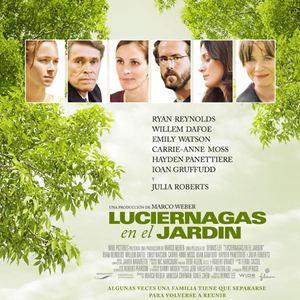 Luci rnagas en el jard n fotos y carteles for Luciernagas en el jardin libro