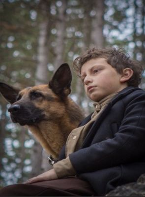 Shepherd: Story of a Jewish Dog