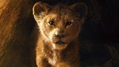 """'El rey león' no es acción real y sí una película de """"animación hiperrealista"""" según Billy Eichner (Timon)"""