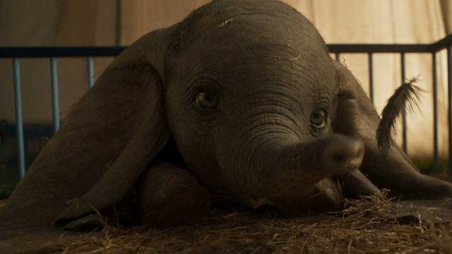 Las primeras reacciones a 'Dumbo' son muy positivas