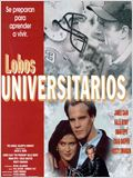 Lobos universitarios