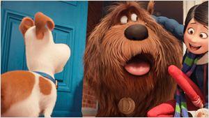 Eric Stonestreet actualiza el estado de 'Mascotas 2'