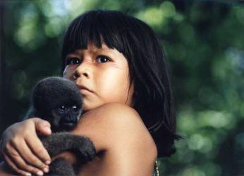 taina uma aventura na amazonia