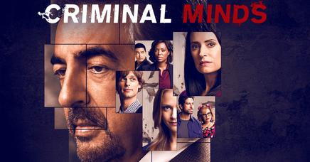 Mentes Criminales Temporada 14 Sensacinecom