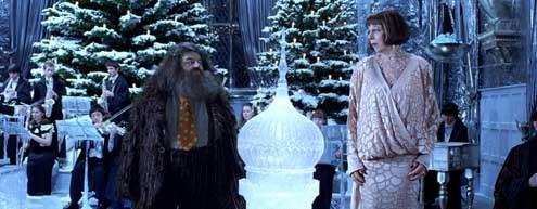 Harry Potter y el Cáliz de Fuego : Foto Frances de la Tour, Robbie Coltrane
