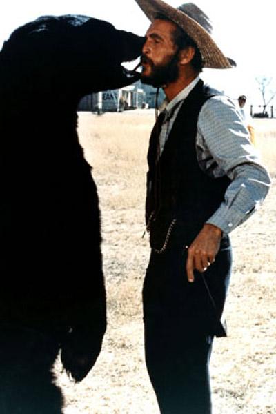 El juez de la horca : Foto John Huston, Paul Newman