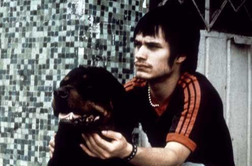 Amores perros : Foto Gael García Bernal