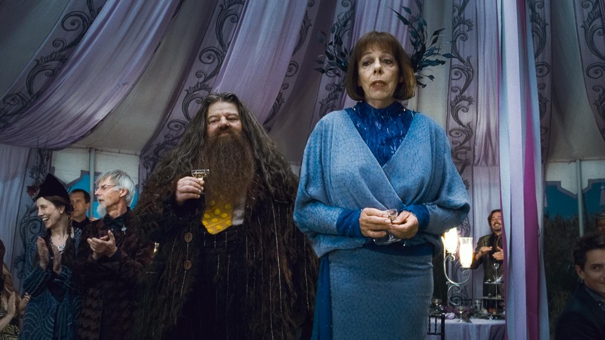 Harry Potter y las reliquias de la muerte: Parte 1 : Foto Frances de la Tour, Robbie Coltrane