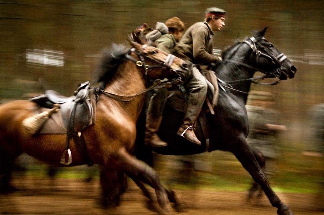 War Horse (Caballo de batalla) : Foto Steven Spielberg
