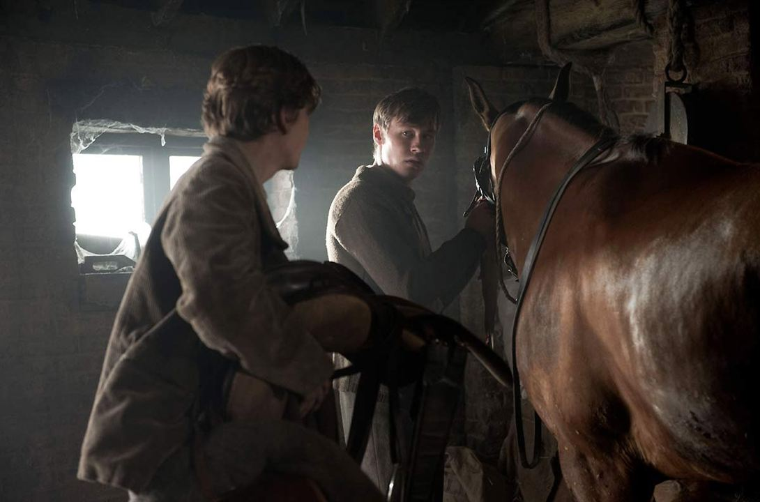 War Horse (Caballo de batalla) : Foto David Kross