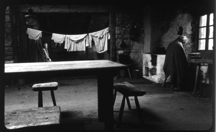 The Turin horse : foto