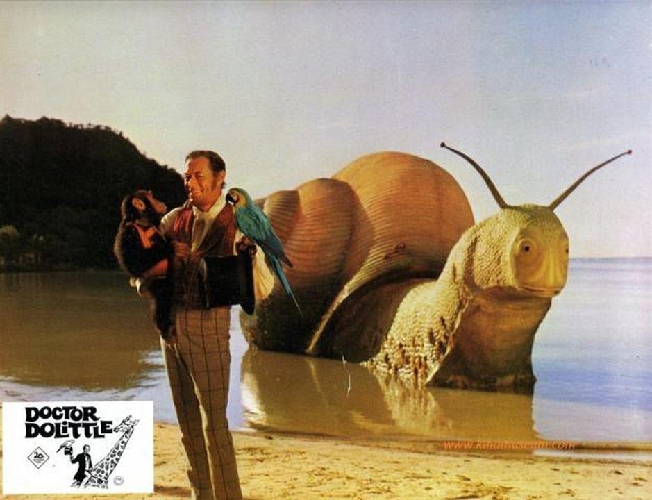 El extravagante doctor Dolittle : Foto