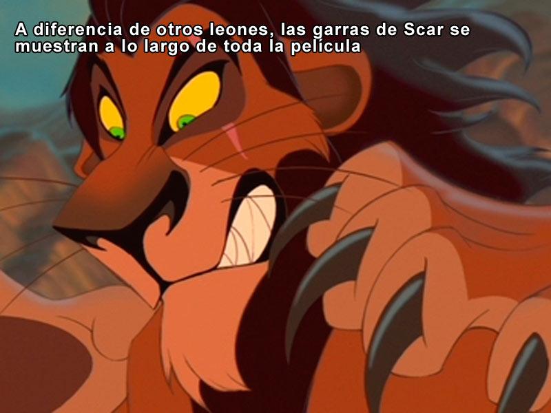 A diferencia de otros leones, las garras de Scar se muestran a lo largo de toda la película