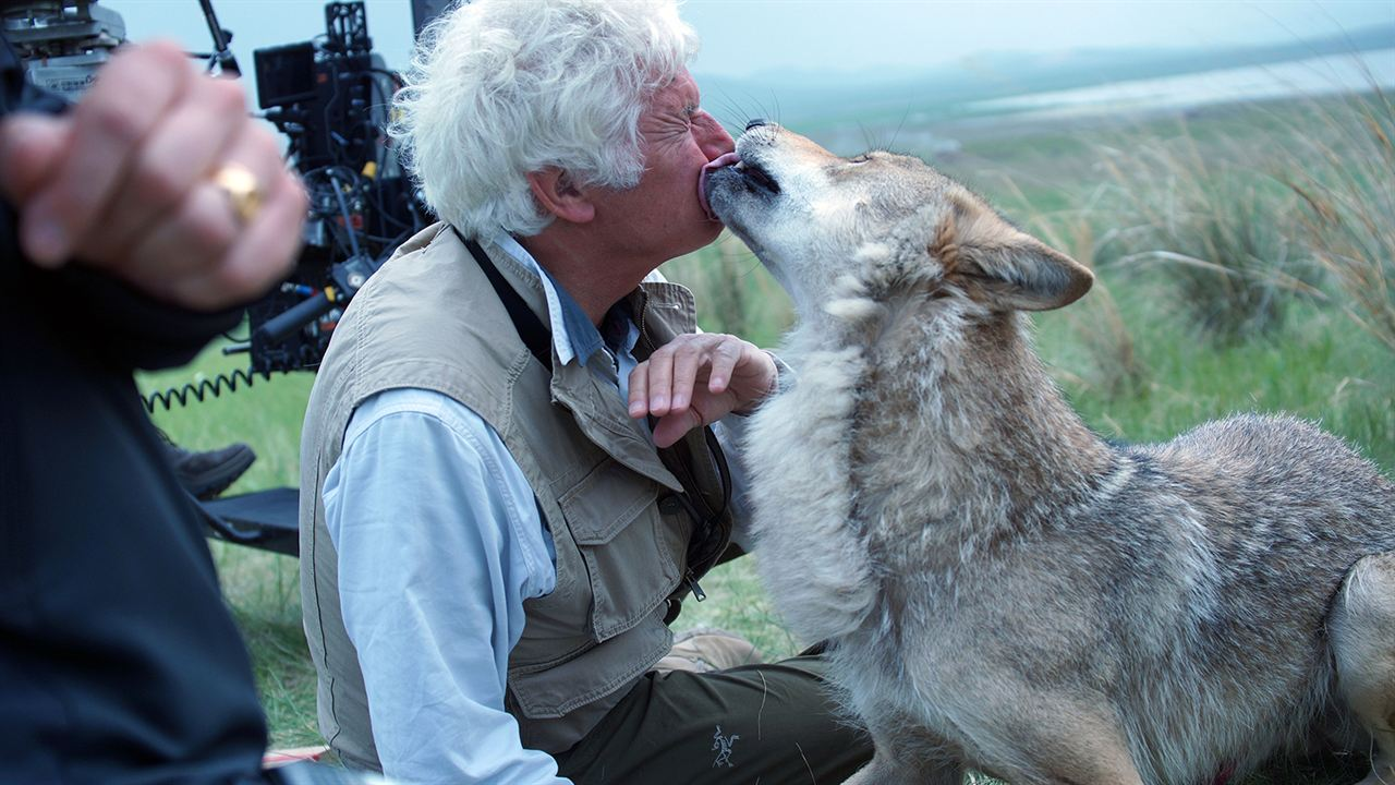 El último lobo (Wolf Totem) : Foto Jean-Jacques Annaud