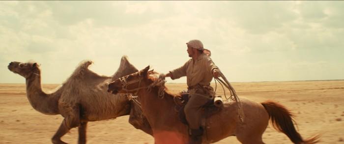 Celestial Camel : Foto