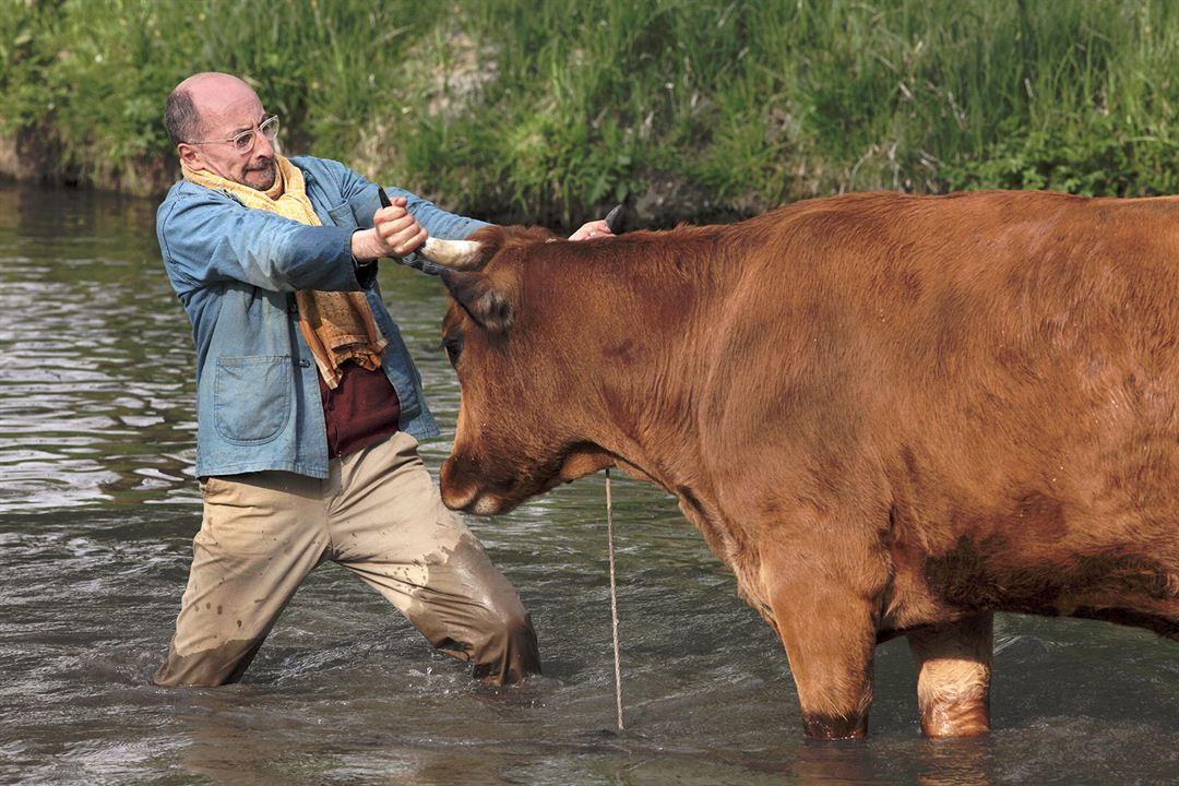 La vaca : Foto Fatsah Bouyahmed