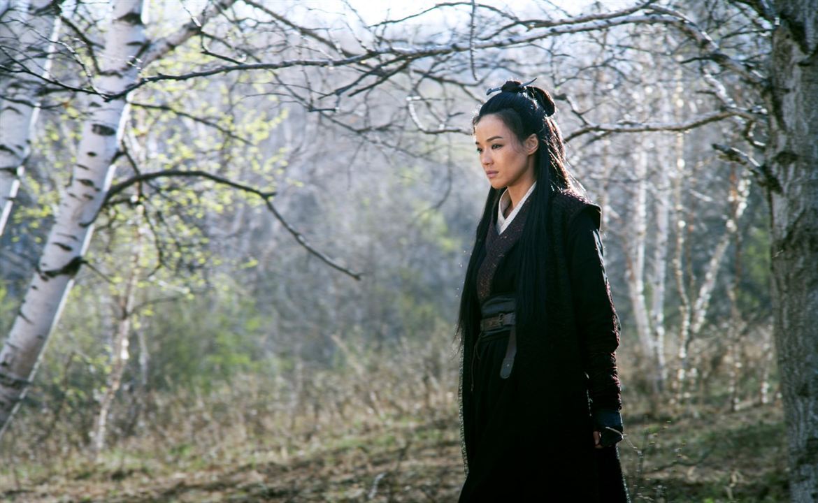 The Assassin: Shu Qi