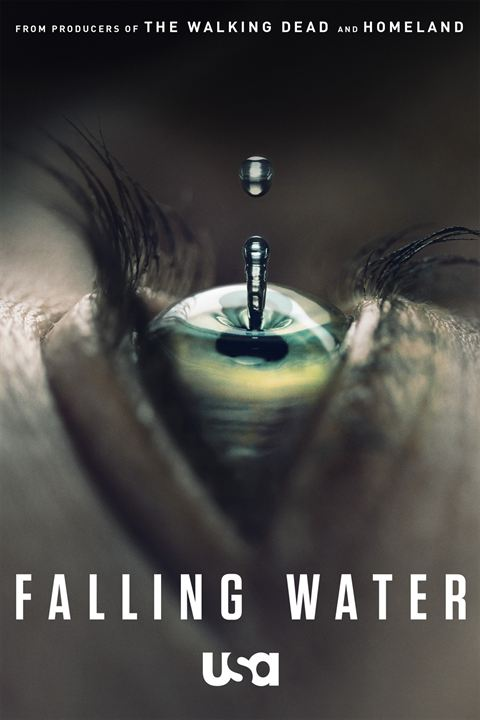 Falling Water : Cartel