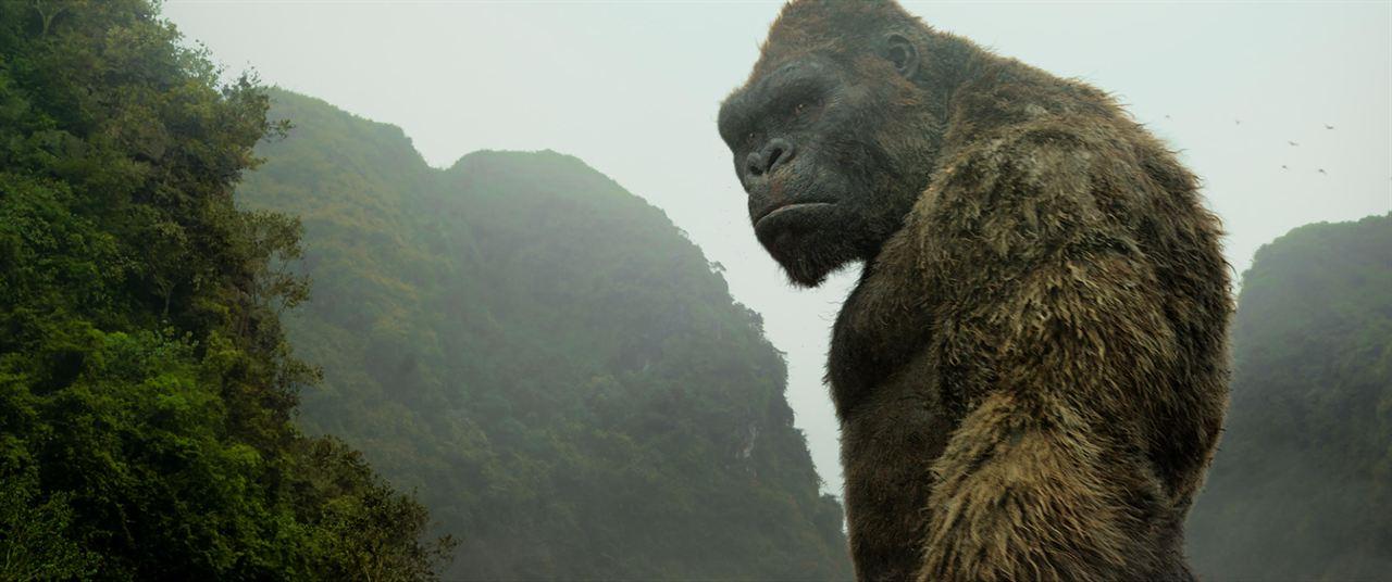 Kong: La Isla Calavera : Foto