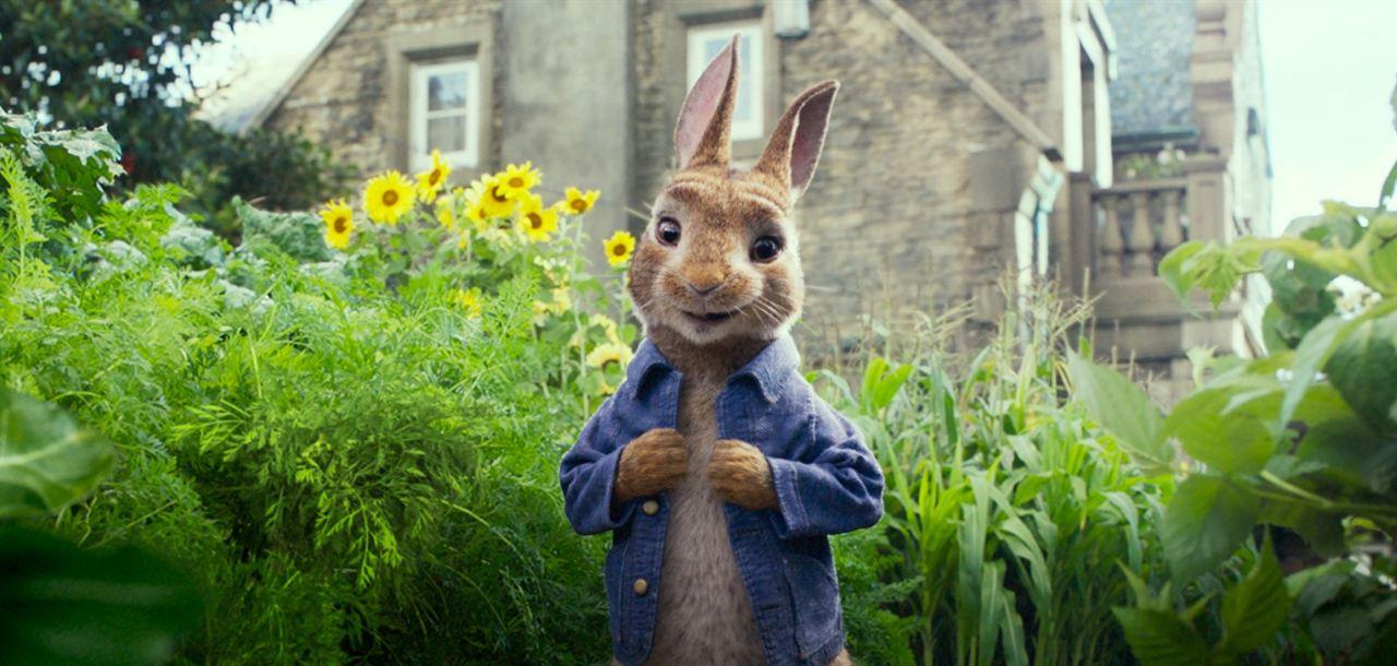 Peter Rabbit : Foto