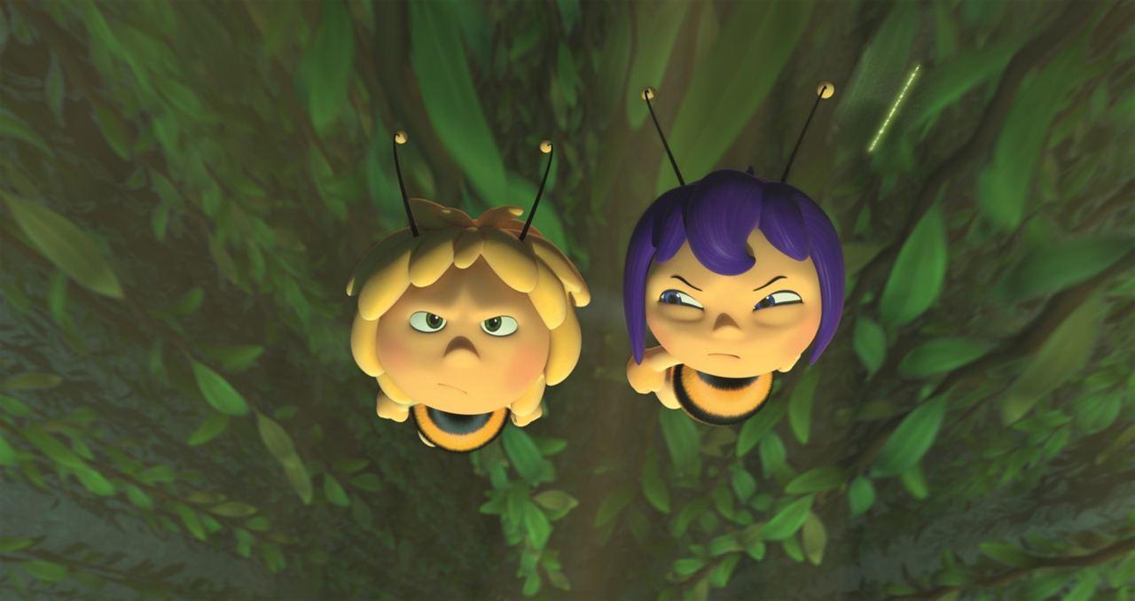 La abeja Maya, los juegos de la miel : Foto