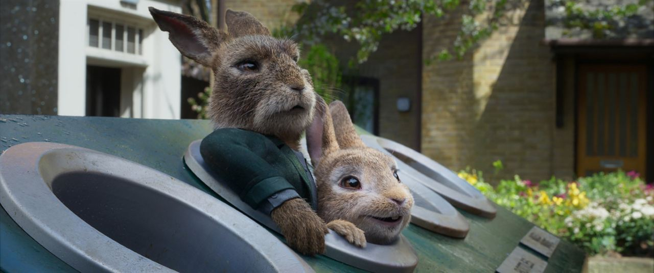 Peter Rabbit 2: A la fuga : Foto