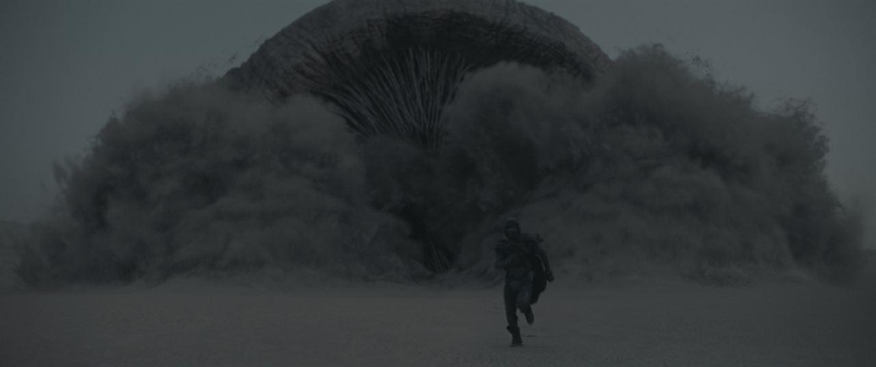 Dune : Foto Timothée Chalamet