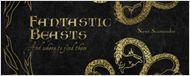 'Animales fantásticos y dónde encontrarlos': El rodaje del 'spin-off' de 'Harry Potter' ya ha comenzado