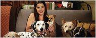 'Cómo conocí a vuestra madre': ¿Qué pasó con los cinco perros de Robin?