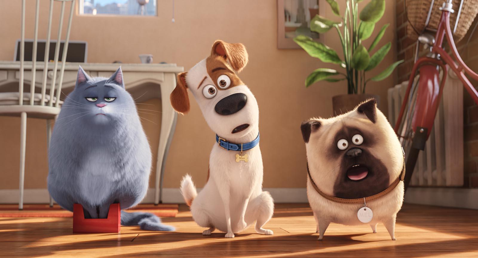 Descargar   La Vida Secreta de Tus Mascotas   MEGA 1 Link