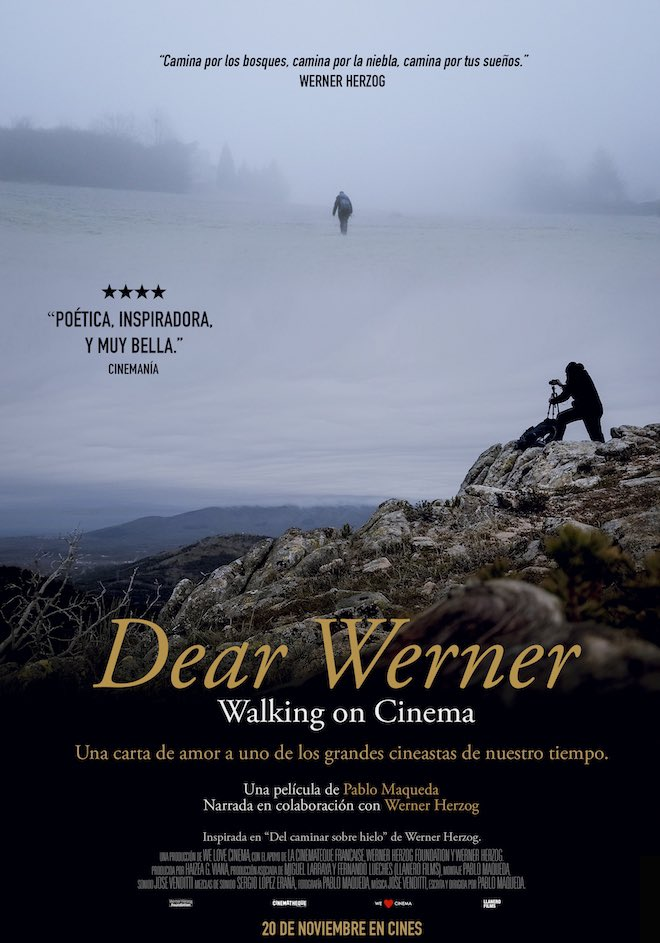 Dear Werner - Cartel
