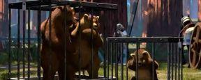 'Shrek': La triste historia de los tres osos que quizás no notaste