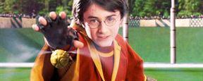 'Animales fantásticos y dónde encontrarlos': ¿Habrá Quidditch en la película? ¿Cómo se llama?
