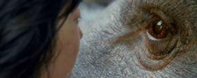 6 películas sobre mascotas que puedes ver en Netflix