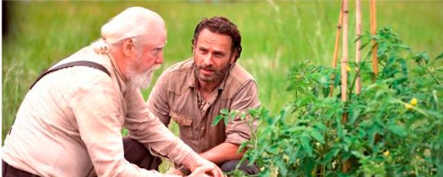 The Walking Dead\': ¡Primer \'sneak peek\' de la cuarta ...