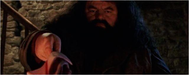 'Harry Potter': ¿Por qué lleva Hagrid un paraguas rosa y para qué sirve?