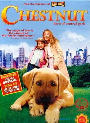 Chesnut: El héroe de Central Park