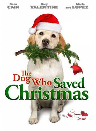 El perro que salvó la Navidad