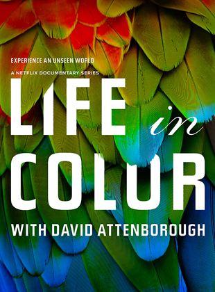 La vida a todo color, con David Attenborough