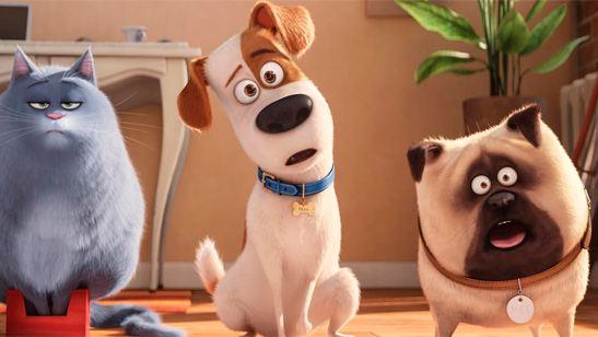 'Mascotas', mejor estreno del año, supera a 'Escuadrón suicida' en la taquilla española