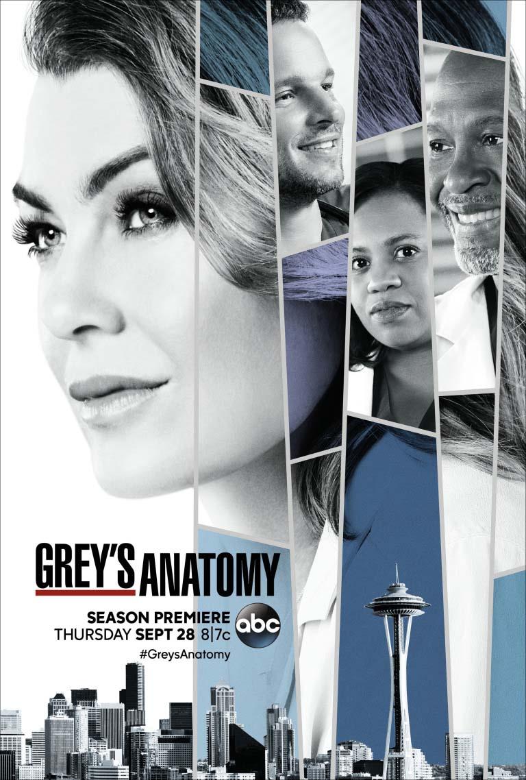 Anatomía De Grey Temporada 14 Sensacine Com