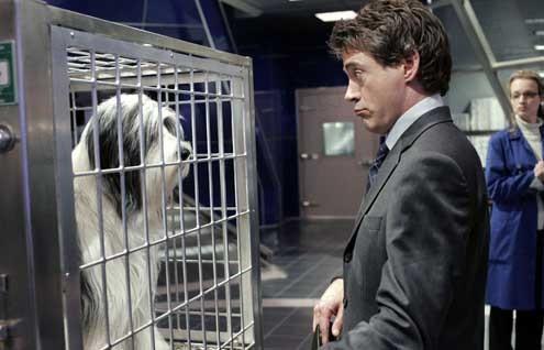 Cariño, estoy hecho un perro : Foto Bess Wohl, Brian Robbins, Robert Downey Jr.