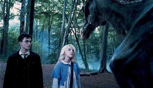 Harry Potter y la Orden del Fénix : Foto Daniel Radcliffe, Evanna Lynch