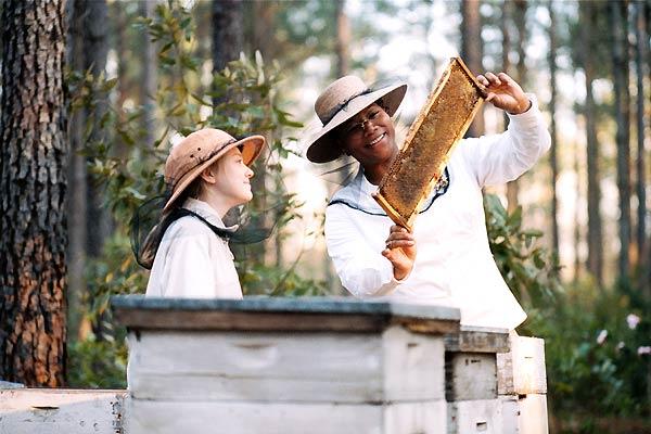 La vida secreta de las abejas : Foto Dakota Fanning, Gina Prince-Bythewood, Queen Latifah