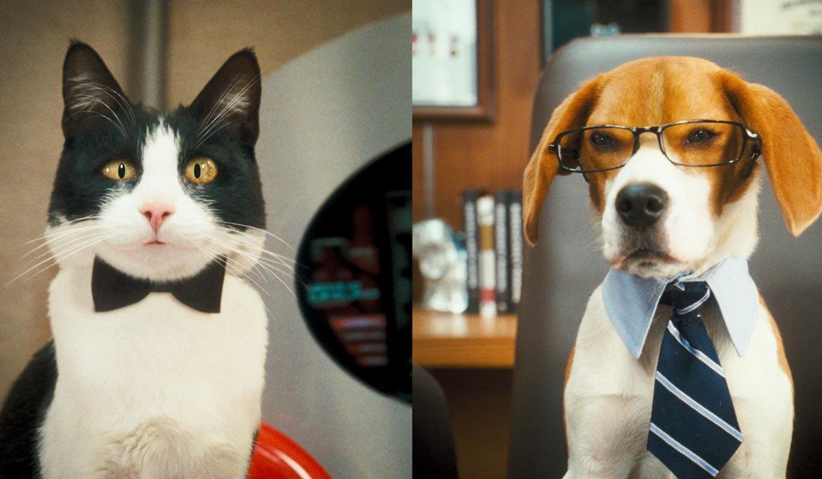 Como perros y gatos: La revancha de Kitty Galore: Brad Peyton, Kevin Lima