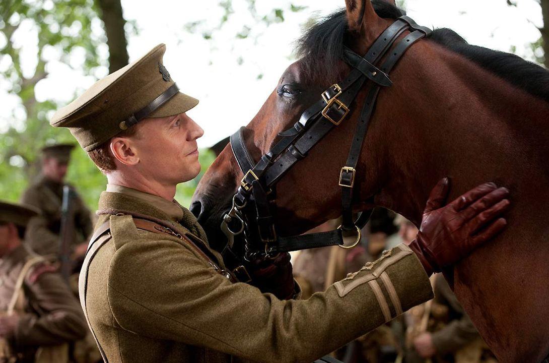 War Horse (Caballo de batalla) : Foto Tom Hiddleston