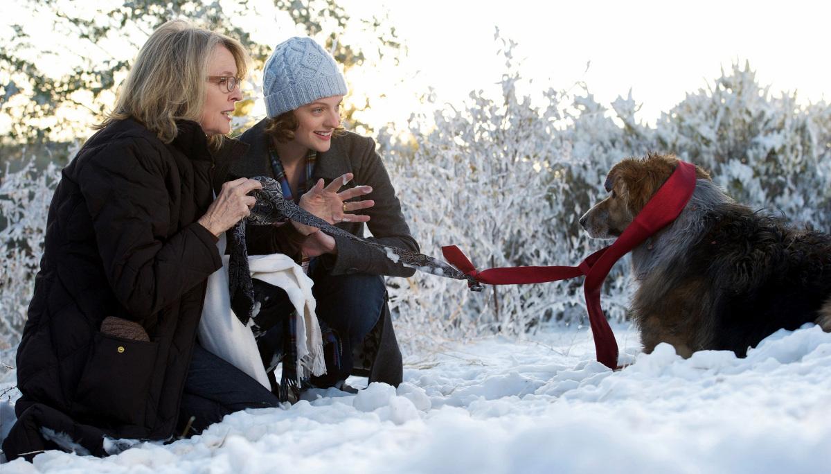 ¡Por fin solos! : Foto Diane Keaton, Elisabeth Moss