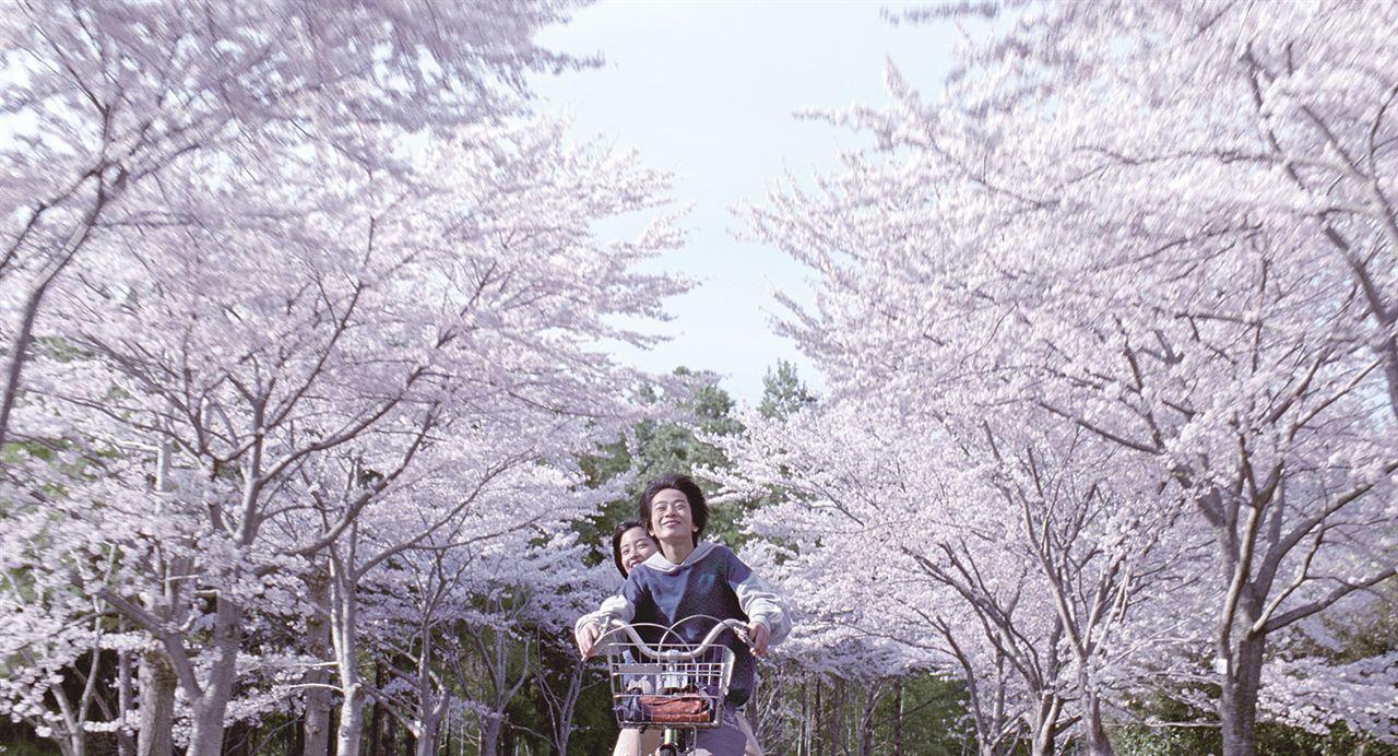 Nuestra hermana pequeña : Foto Ohshirô Maeda, Suzu Hirose